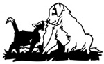 chiens&chats